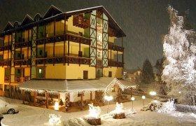 Hotel Dal Bon - Andalo-2